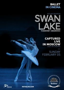 Poster Swan Lake